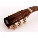 Акустична гітара Cort AP550 (VB)