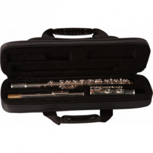 Кейс для флейти Gator GLFLUTE A